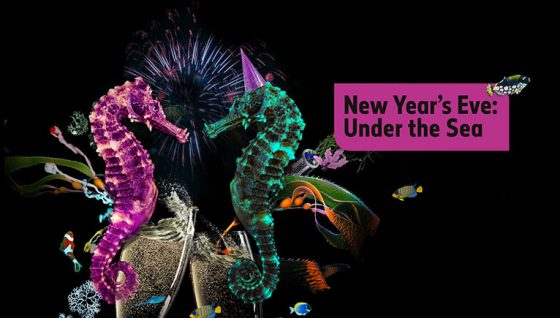 自然历史博物馆跨年趴 | New Year's Eve: Under the Sea