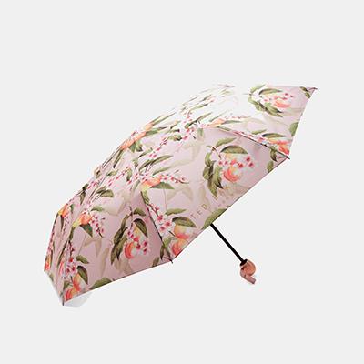 Ted Baker CLEMMIE Peach Blossom foldaway umbrella
