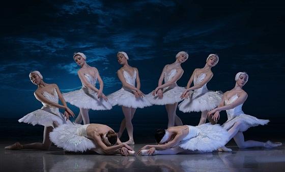 芭蕾舞剧天鹅湖