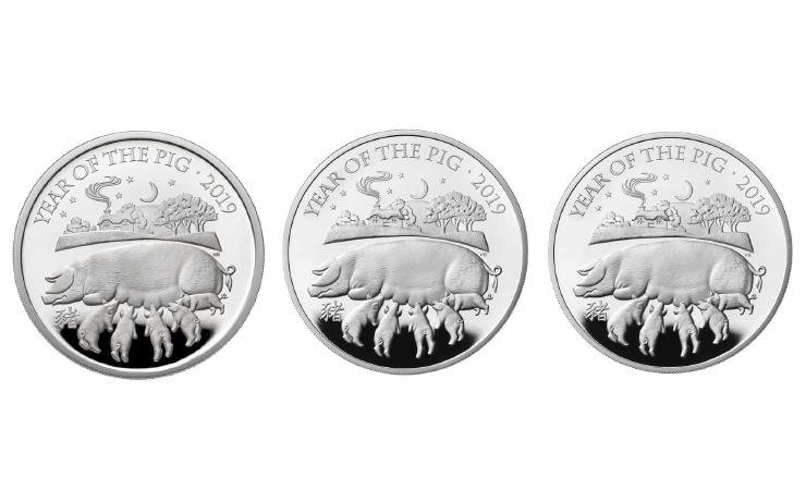 猪年纪念币