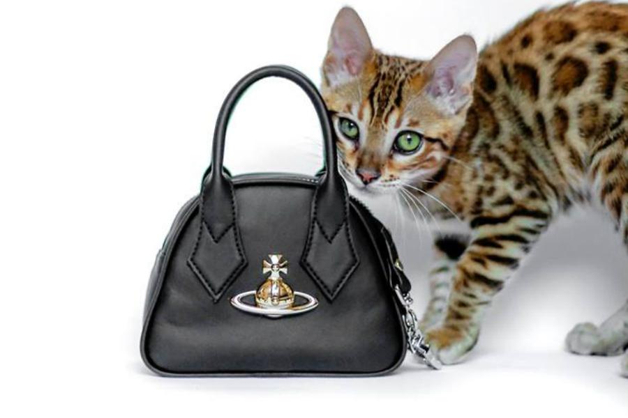 Mybag | 蹦迪必备!Vivienne Westwood限时75折!